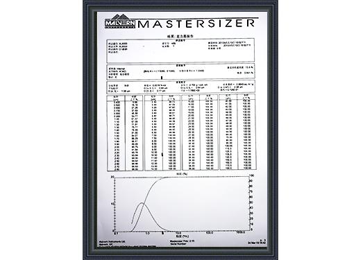 盛朗白石-XL6000质检报告